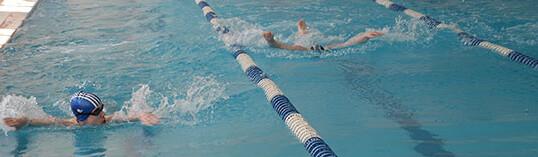 Чемпионат и Первенство Сибирского Федерального округа по плаванию