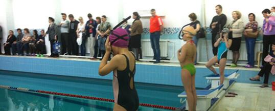 Соревнования по плаванию в ластах, посвященные «Дню защитника Отечества»  отделения подводного спорта