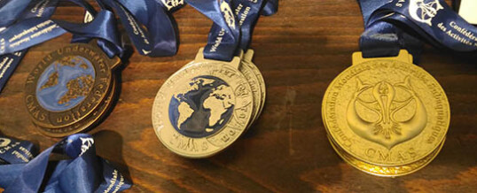 Чемпионат Мира по подводному спорту (дайвинг)