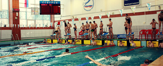 Соревнования по плаванию «Новогодний фейерверк»
