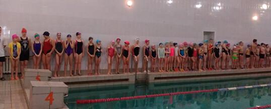 Первенство по плаванию «День спринтера»
