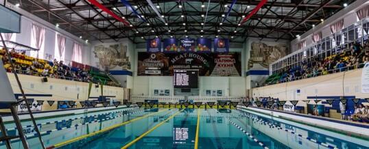 Лидеры УСЦ борются за победу на чемпионате России по плаванию в ластах